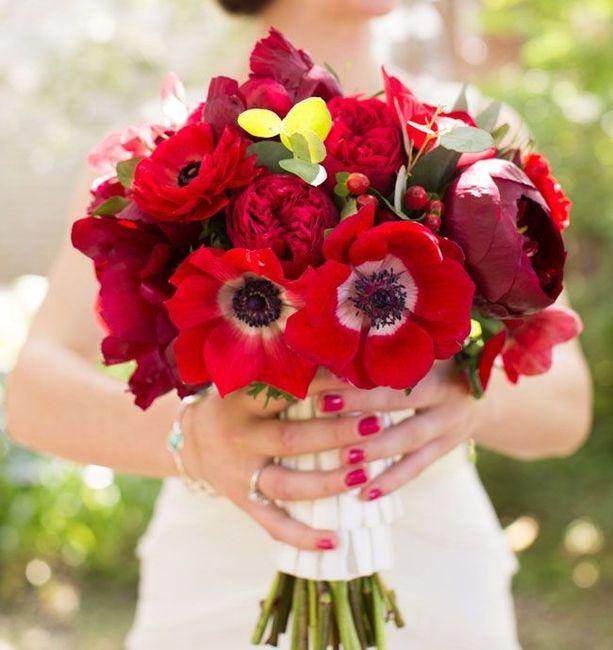 Fleur éphémère ... coquelicot 6