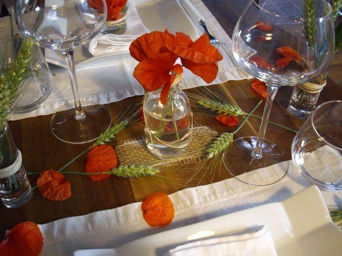 Fleur éphémère ... coquelicot 16