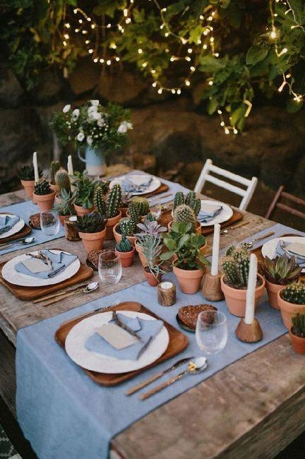Inspi cactus 10