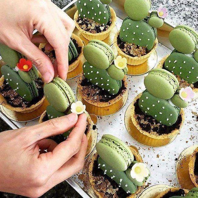 Inspi cactus 16