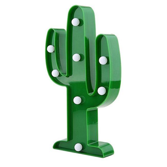 Inspi cactus 17