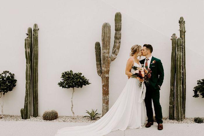Inspi cactus 28