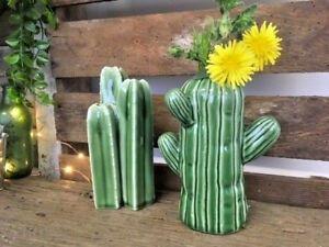 Inspi cactus 29