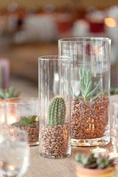 Inspi cactus 37