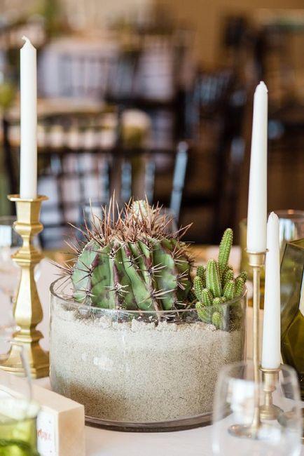 Inspi cactus 38