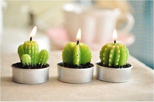 Inspi cactus 48