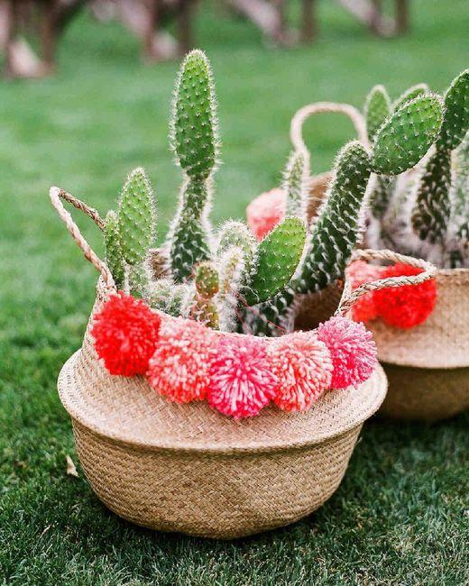 Inspi cactus 53
