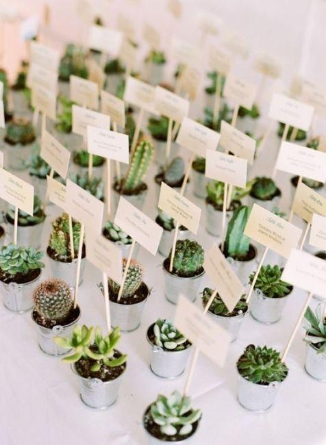 Inspi cactus 55