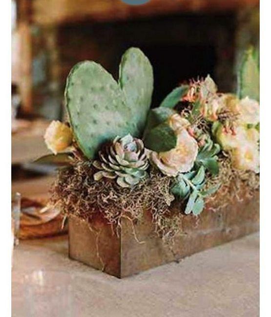 Inspi cactus 59