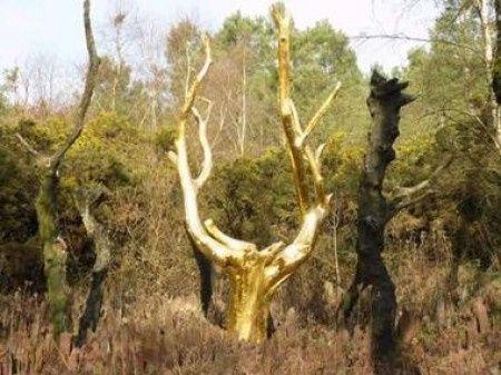 Forêt de Brocéliande: l'arbre d'or