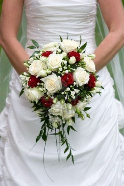 Bouquet de roses rouge et blanche photo - Bouquet rose rouge et blanche ...