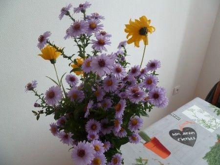 quelques idées de fleur
