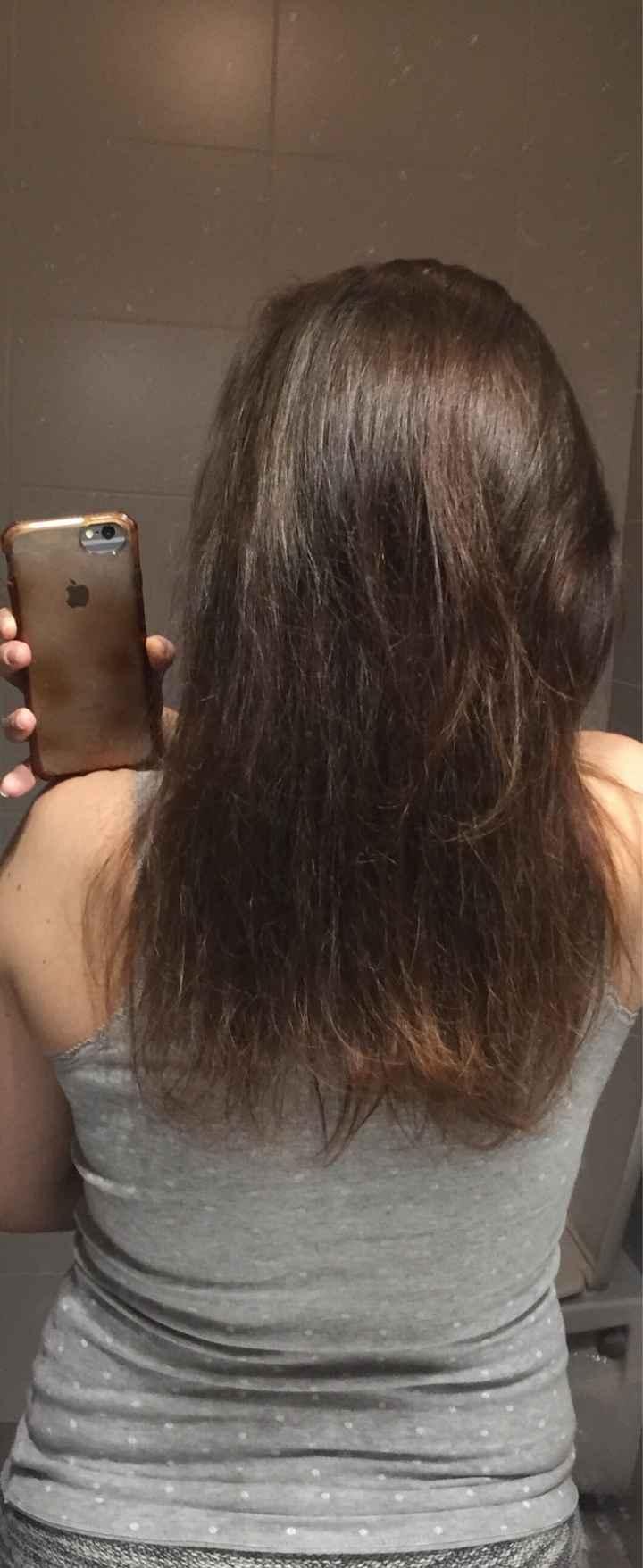 Résultat poussé de cheveux - 2