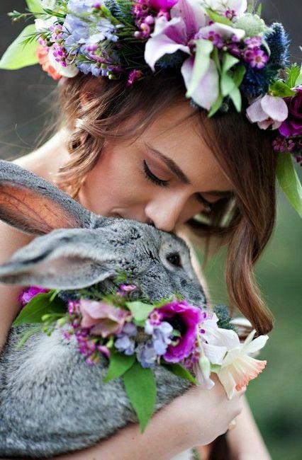 Le plus beau cliché des animaux est... 1