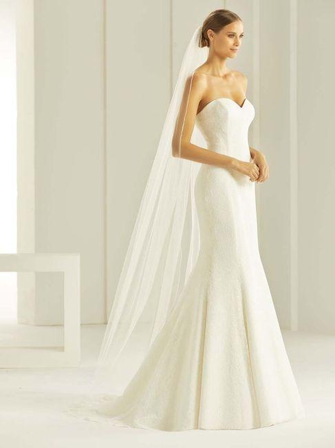 Pour ma robe de rêve je veux ce voile ! 1