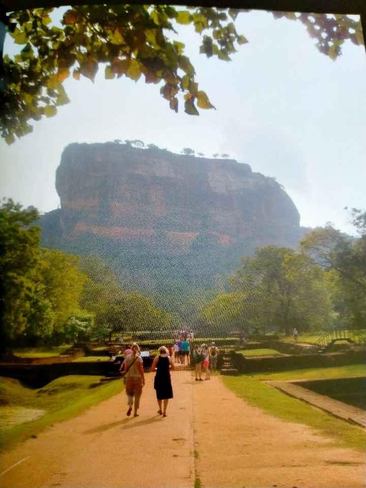 Voyage au Sri Lanka - 5