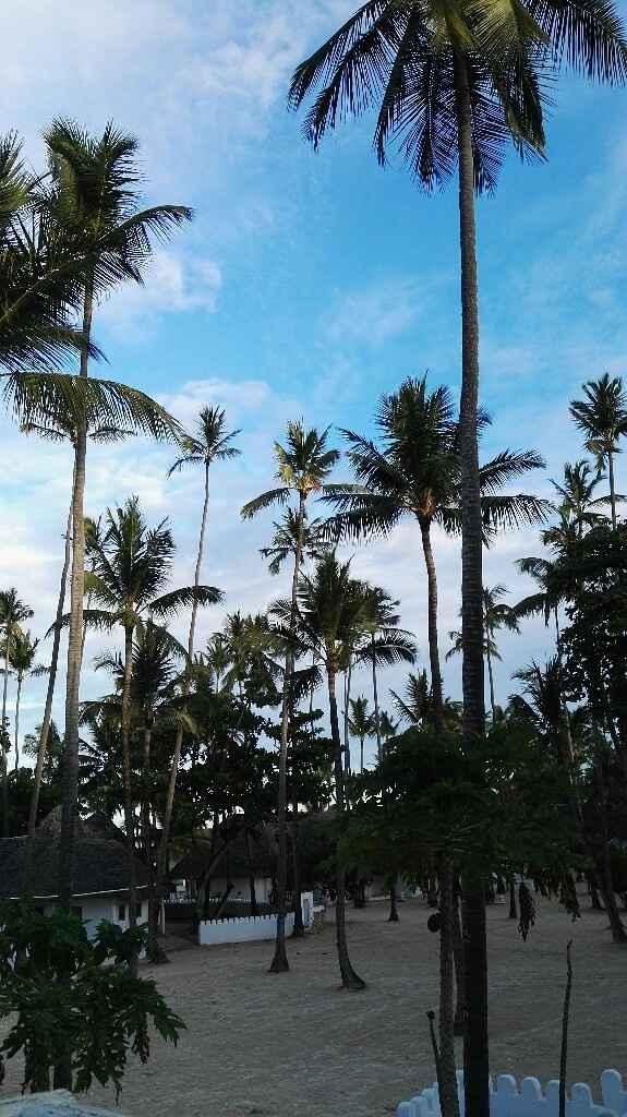 Zanzibar - voyage de noces - 2