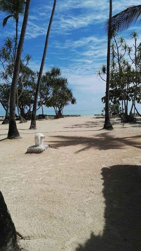 Zanzibar - voyage de noces - 5