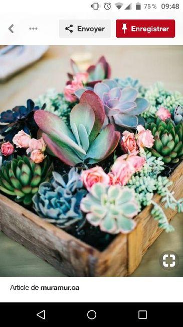 Cadeaux invités succulentes - 2
