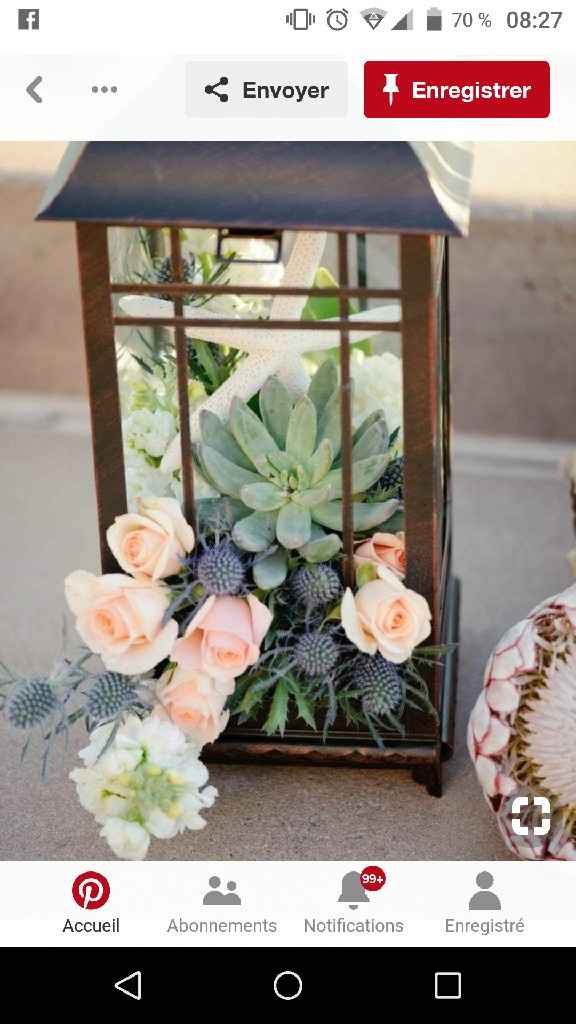 Cadeaux invités succulentes - 1