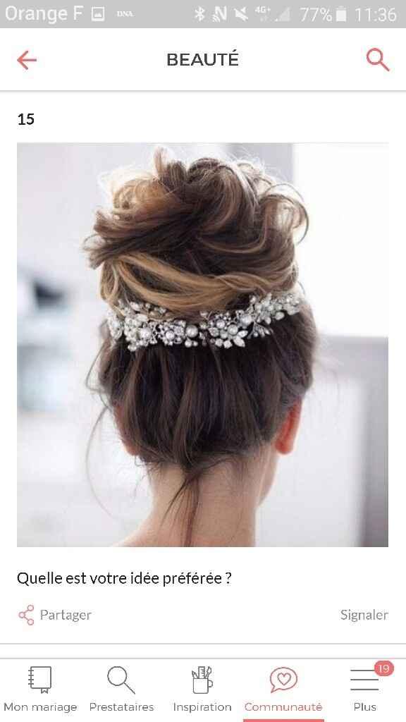 Quel accessoire pour vos cheveux??? - 1
