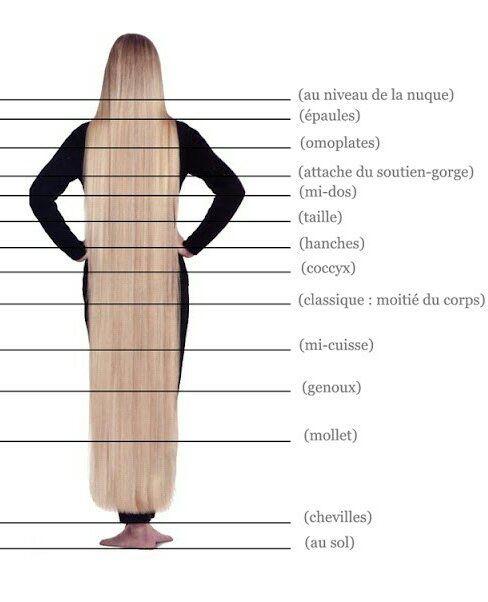 La longueur de vos cheveux - 1