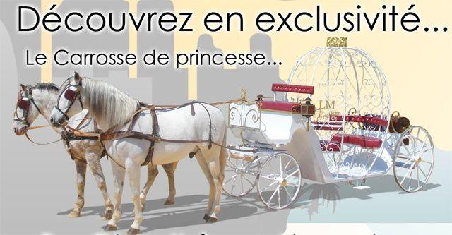 Carrosse cal che seine et marne seine et marne forum - Cendrillon et son carrosse ...