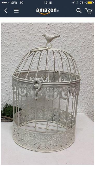 Cage à oiseaux - 1