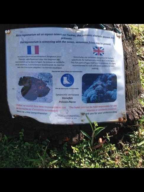 Conseil si vous partez en polynésie française - 1