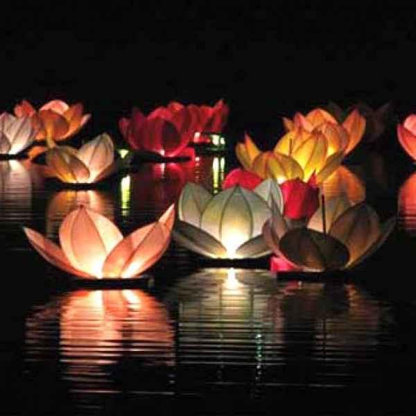 Lanterne flottante fleurs de lotus - vos avis ? - 1