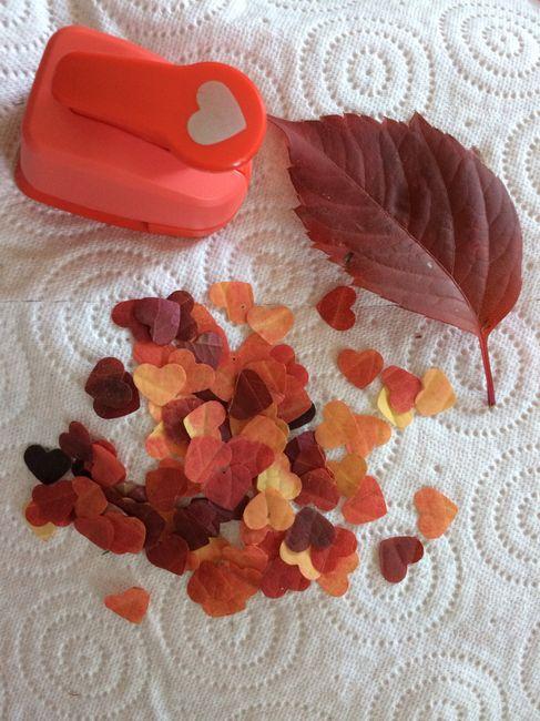 Alternative au lancer de riz, des confettis écologiques ! 1