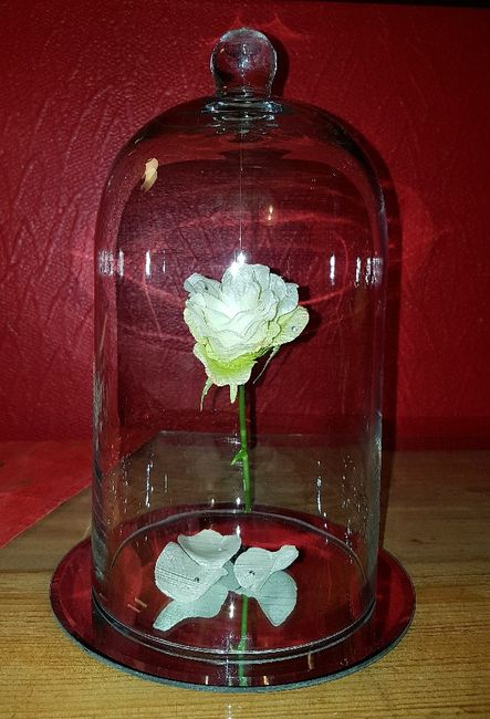 diy cloche de verre et rose la belle et la b te d coration forum. Black Bedroom Furniture Sets. Home Design Ideas