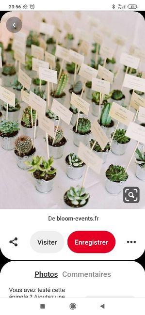 Cadeaux invités : mini plante 1