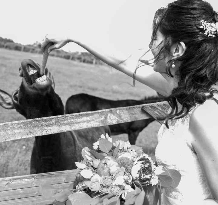 Mariage champêtre à la campagne - 2