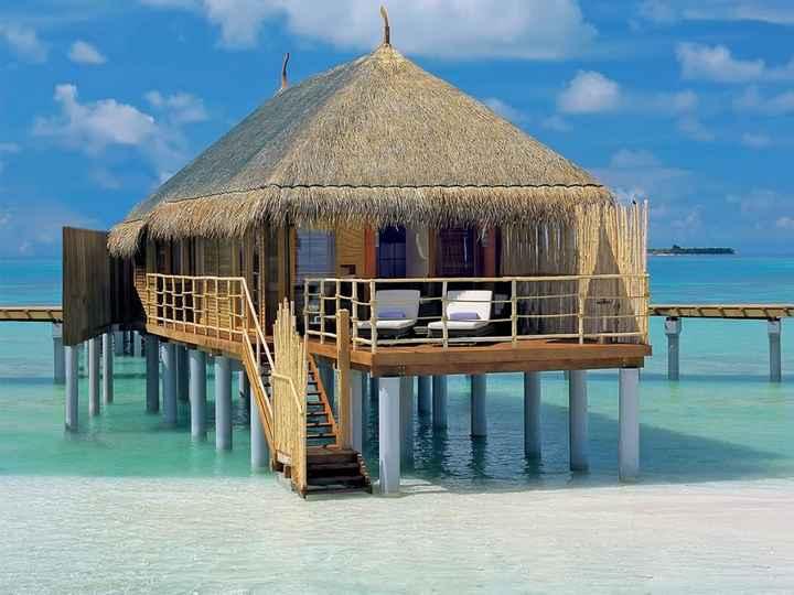 Besoin de conseil pour voyage de noces aux maldives - 1