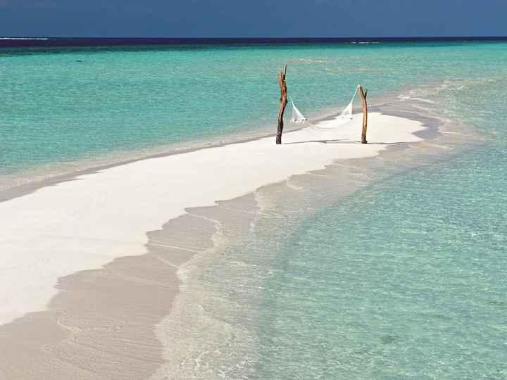 Besoin de conseil pour voyage de noces aux maldives - 4