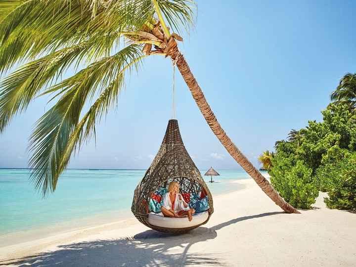 Besoin de conseil pour voyage de noces aux maldives - 8