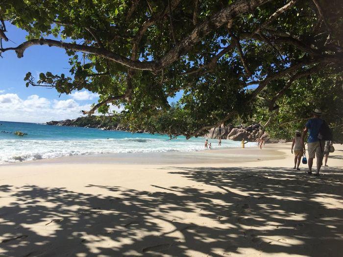 Conseils agence pour combiné ile seychelles - 1