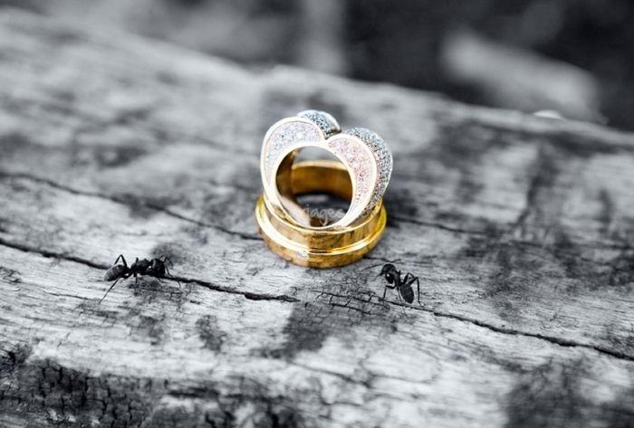 Qui porte une bague de fiançailles ?