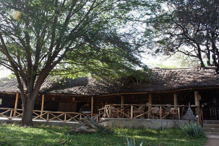 Voyage de noce au kenya - 2