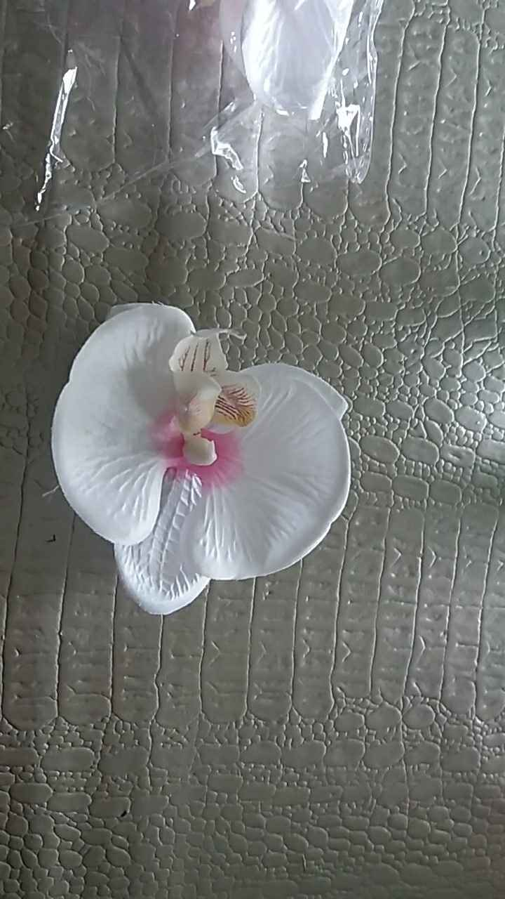 les fleurs orchidées