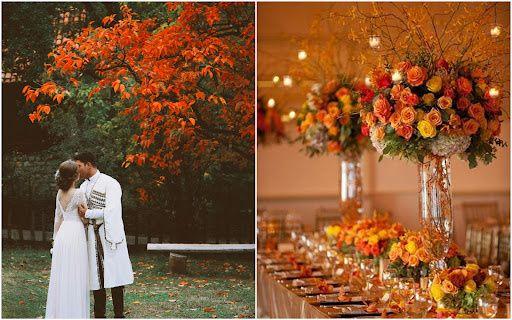 C'est l'automne 🍂🍁🎃 2