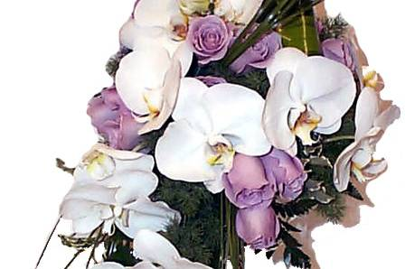 France Fleurs Créations