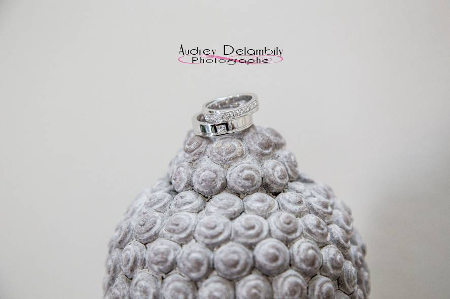 Audrey Delambily - Photographe