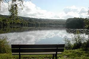 Parc et lac