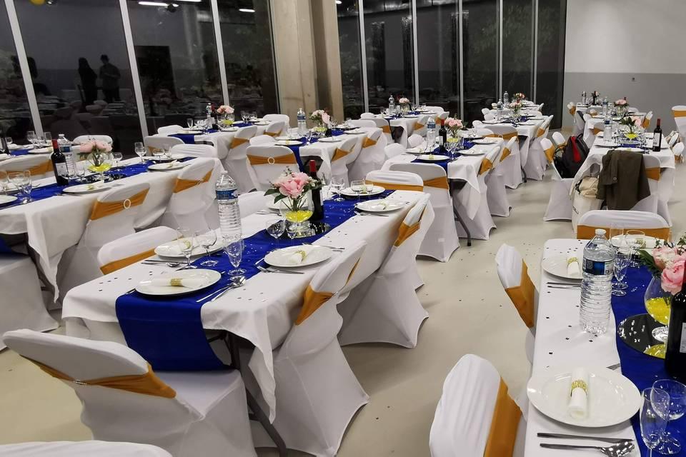Salle Réception (Aucamville)