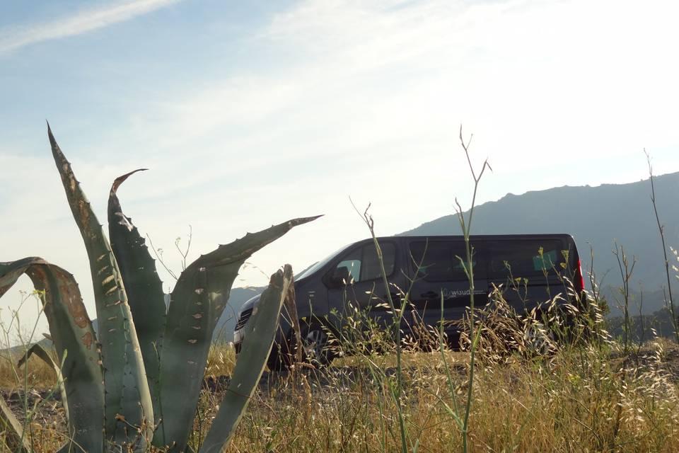 Minibus en excursion