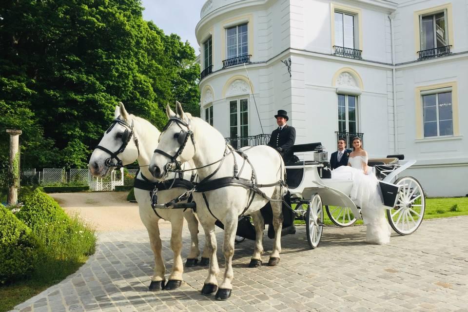Landau blanc chevaux blancs