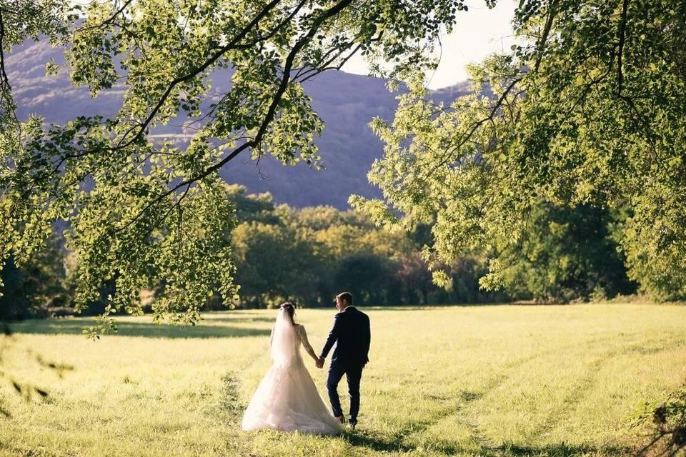 Mariés parc Domaine