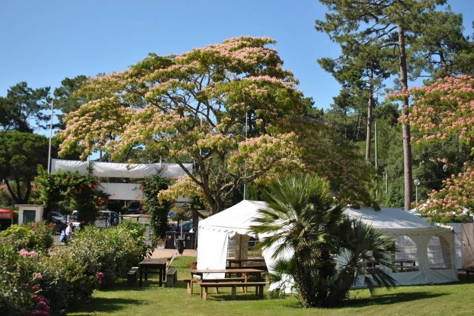 Location Chapiteau 40